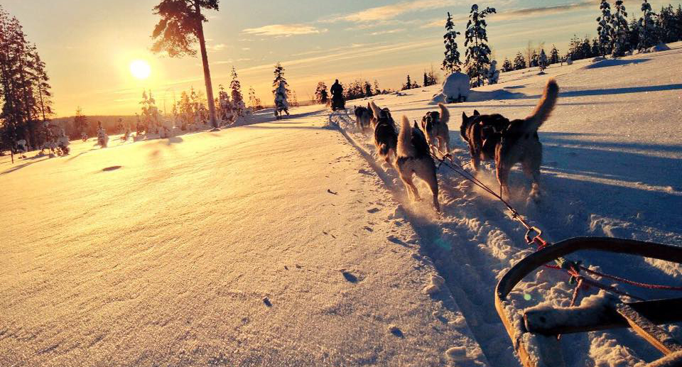 Incentive Travel in Finnish Lapland