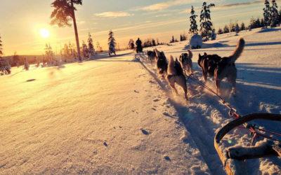 Voyage Incentive en Laponie Finlandaise